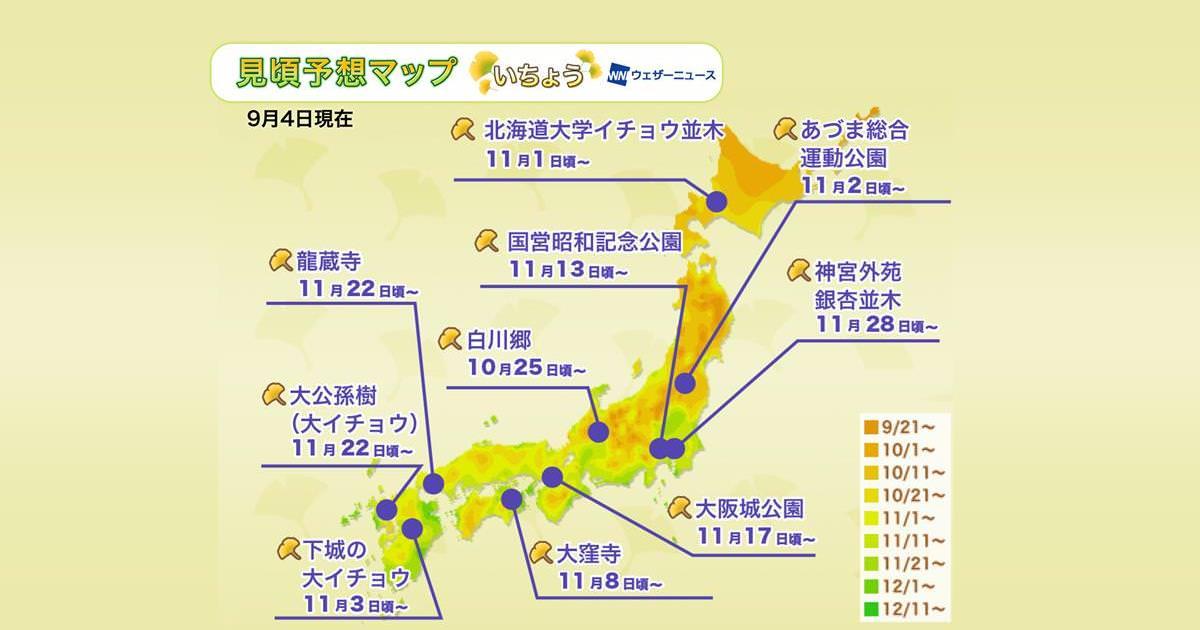 【2019東京銀杏】日本秋季限定賞銀杏景點、銀杏見頃時間、交通總整理