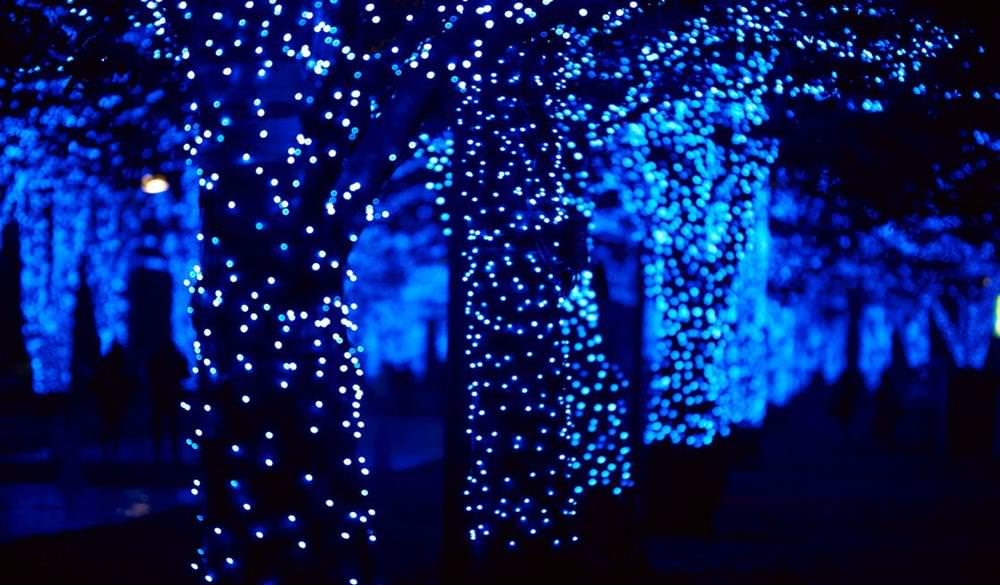 【2020東京點燈】10大必看聖誕點燈,有如繁星灑落人間,浪漫指數破表! - threeonelee.com