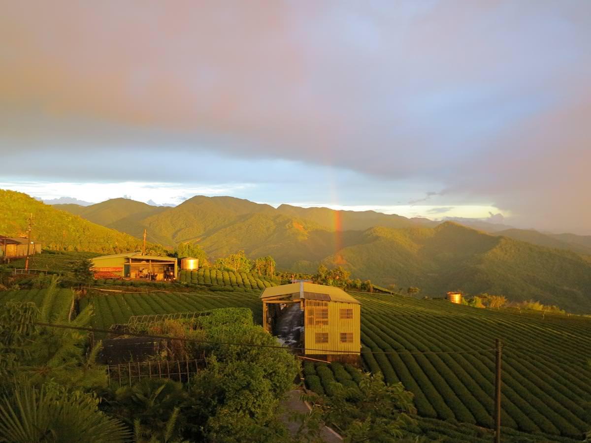 【嘉義阿里山住宿】看日出、搭小火車超方便的阿里山民宿、飯店推薦!