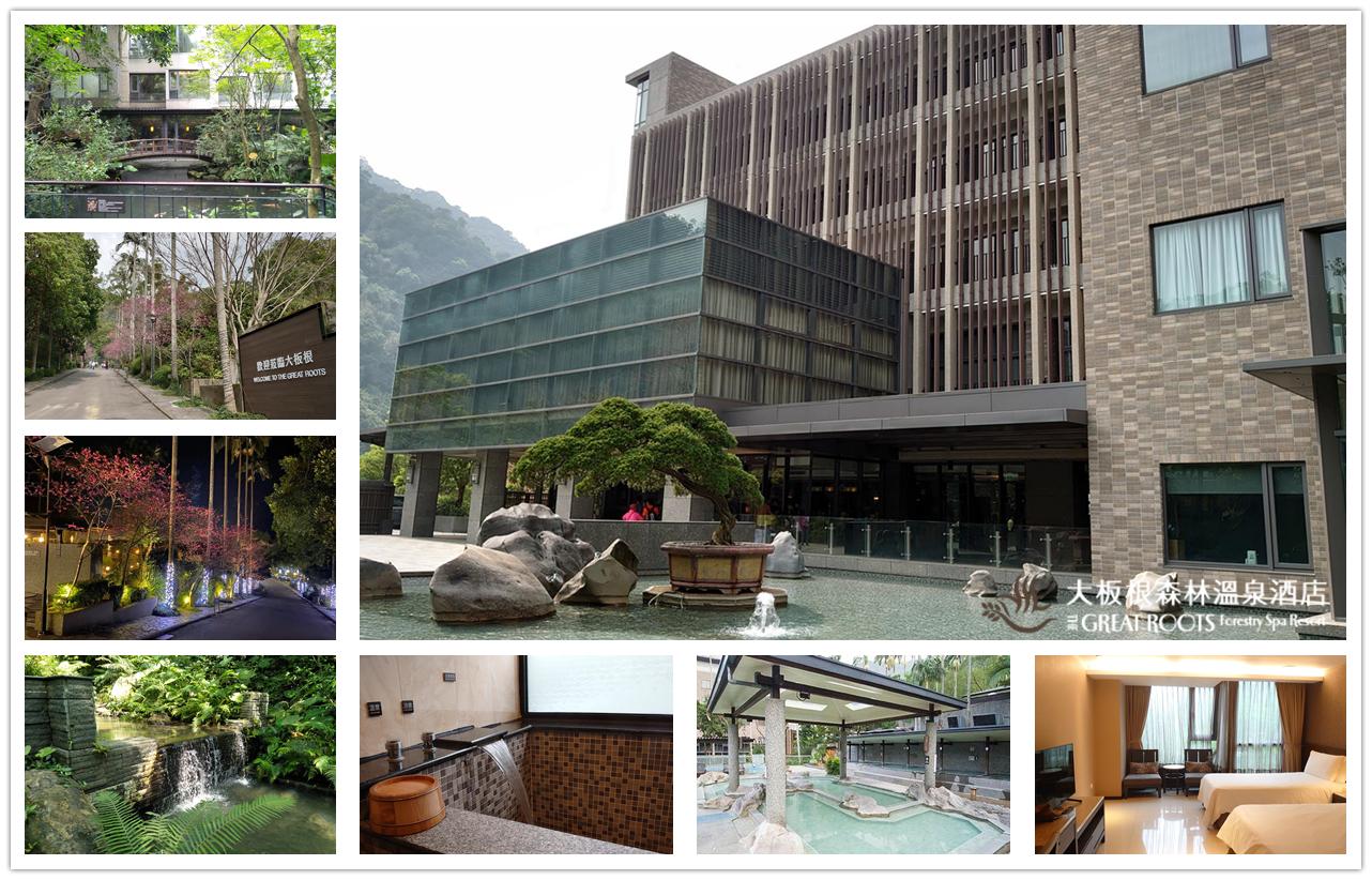 大板根森林溫泉酒店,台北寵物飯店,新北親子住宿,台北飯店,大板根森林遊樂區,親子住宿,親子飯店推薦