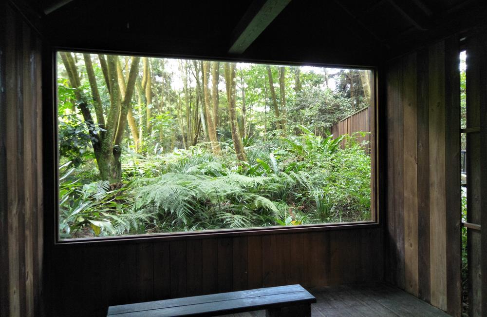 薰衣草森林 森林美術館