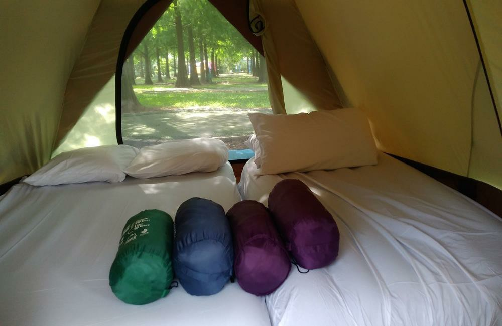藍鵲渡假莊園,苗栗免搭帳露營,苗栗露營推薦,免搭帳露營,移動城堡露營車,苗栗露營車,苗栗 藍鵲