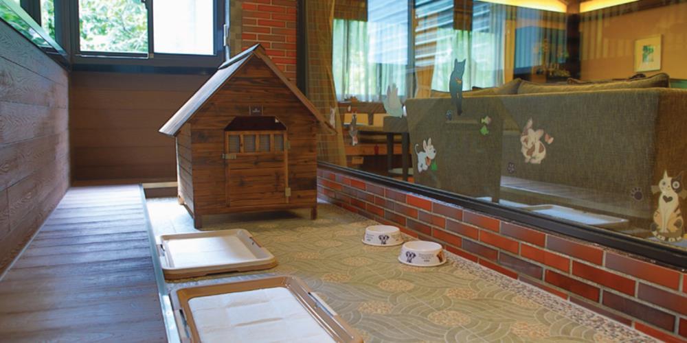 台北寵物友善住宿,大板根森林溫泉酒店,寵物住宿,大板根寵物客房,寵物旅館,大板根物房